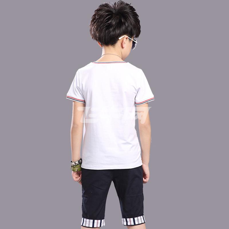 笛钰 男童2016夏季新款儿童短袖休闲中大童海豚印花t恤中裤两件套装